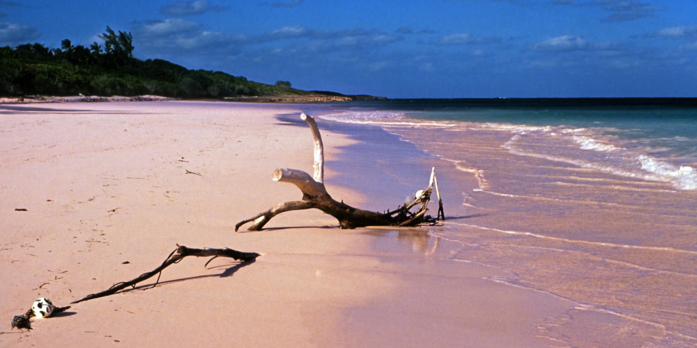 Pink Sands Beach, Нью-Провиденс (Нассау), Андрос, Эксума, Кот, Инагуа, Багамские Острова