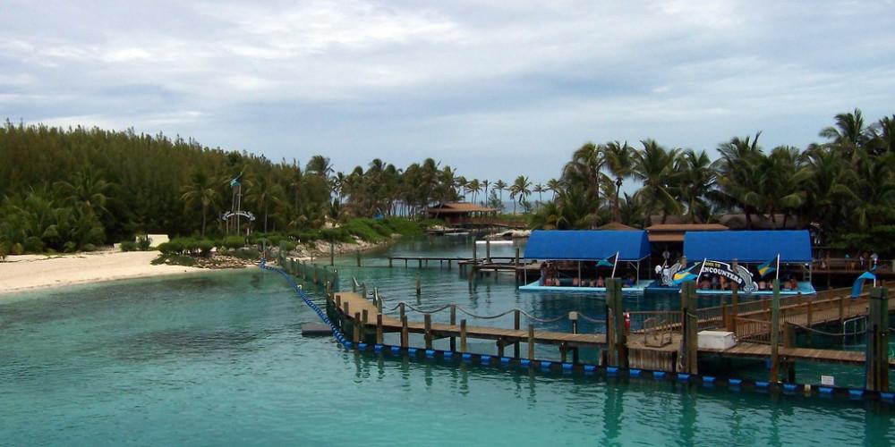 Нассау: дельфинарий, Нью-Провиденс (Нассау), Андрос, Эксума, Кот, Инагуа, Багамские Острова