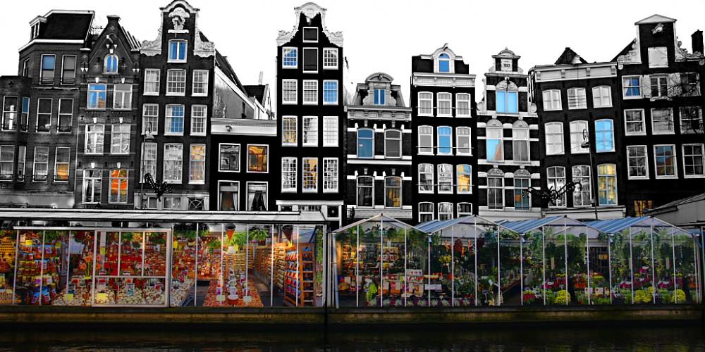 Амстердам: Цветочный рынок, Центр и Запад (Амстердам, Роттердам, Утрехт, Алмере), Нидерланды