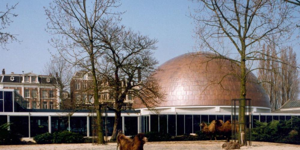 Амстердам: Планетарий Artis, Центр и Запад (Амстердам, Роттердам, Утрехт, Алмере), Нидерланды