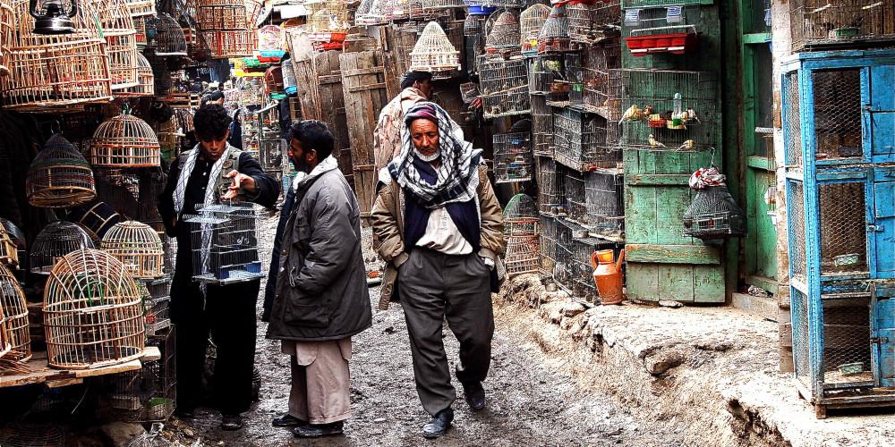 Chicken Street, Kabul, Северо-восток (Кабул, Нуристан, Бадахшан, Тахар, Парван), Афганистан