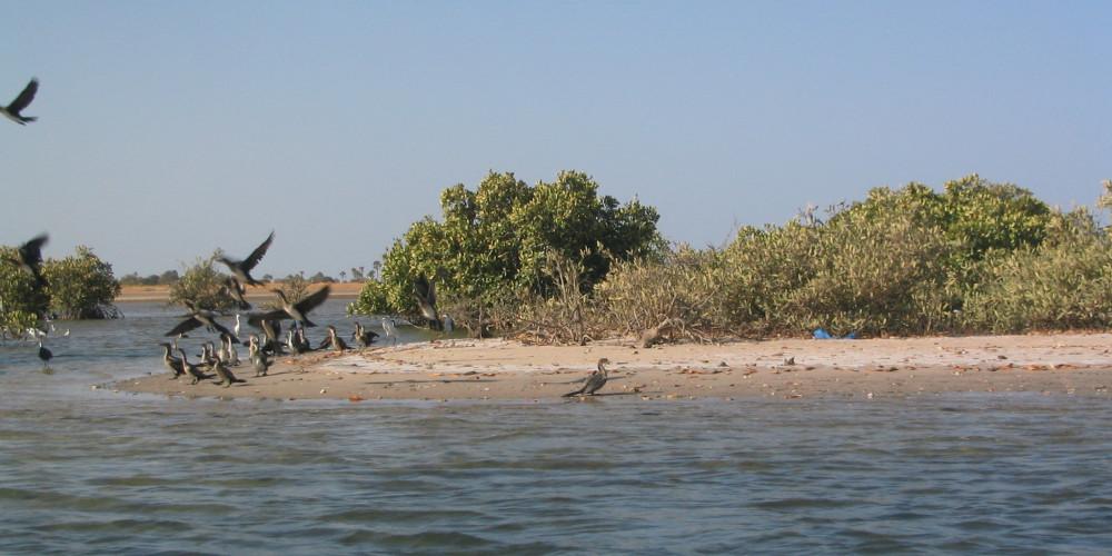 Фото Мар Лодж, Дакар, Тис, Диурбель, Фатик, Каолак, Каффрин, Сенегал