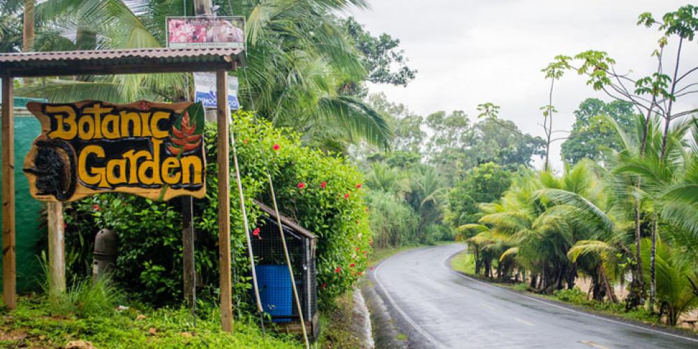 Isla Colon: Ботанический сад Finca Los Монос , Север канала (Колон, Чирики, Лос-Сантос), Панама