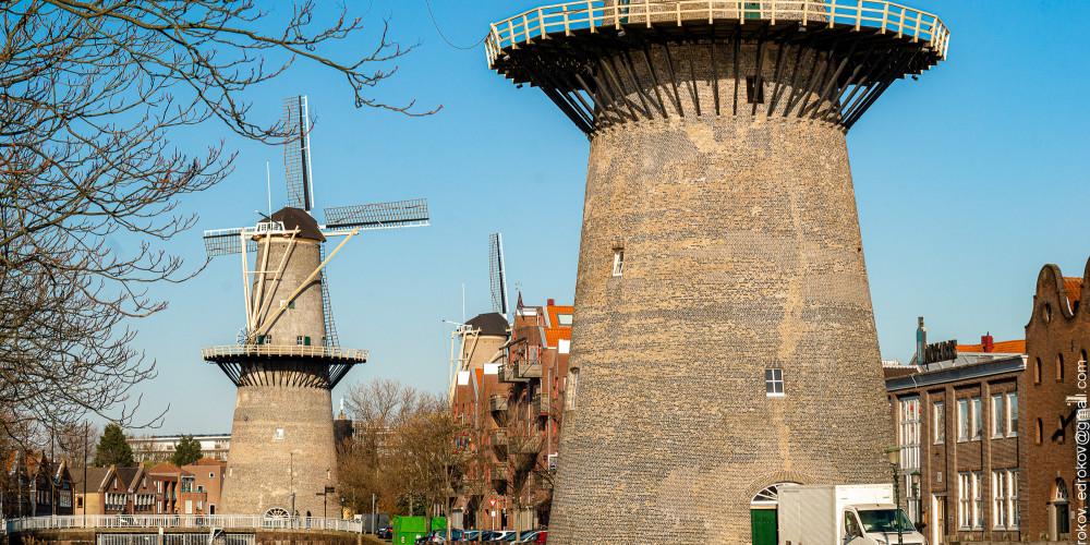 Схидам: De Nieuwe Palmboom, Центр и Запад (Амстердам, Роттердам, Утрехт, Алмере), Нидерланды