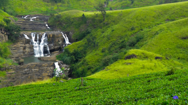 Шри-Ланка осенью