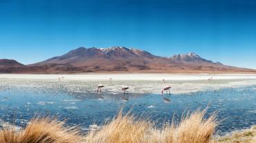 Безвизовый въезд в Боливию с 3 октября 2016