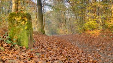 Лучшие места для семейного отдыха в Люксембурге