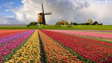 Нидерланды – общие сведения