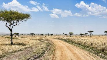 Электронные визы в Кению со 2 июля 2015