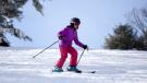 Гид по правилам провоза лыж и сноуборда