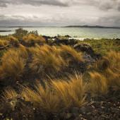 Интересные места на самом севере Новой Зеландии