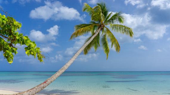60 дней в Доминикане без визы