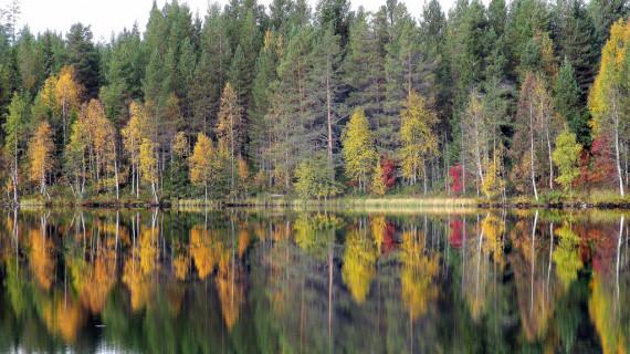 Финляндия – общие сведения